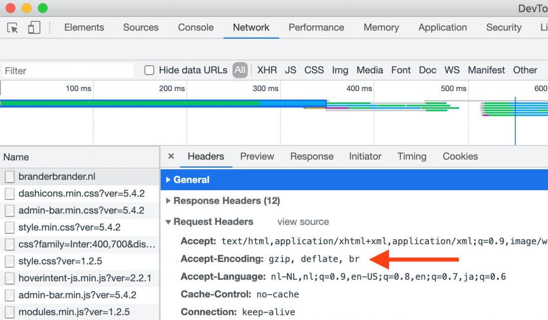Tekstcompressie van een site zien in Chrome DevTools